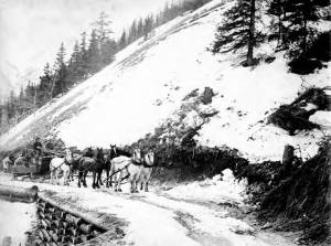 edward_s_orr_stage_company_wagon_on_the_chitinafairbanks_road_alaska_1906