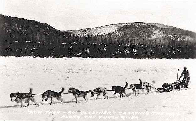 Yukon River mail team